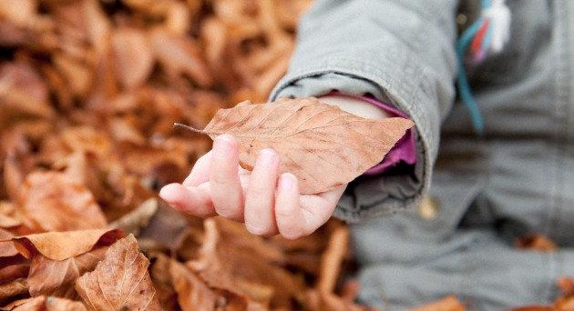 Autumn Kids1