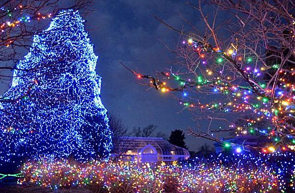 Αποτέλεσμα εικόνας για χριστούγεννα ελλάδα