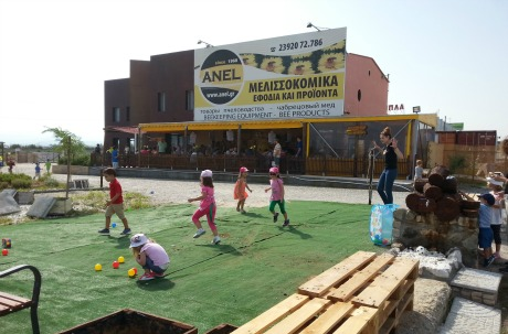 anel-honey-park-party